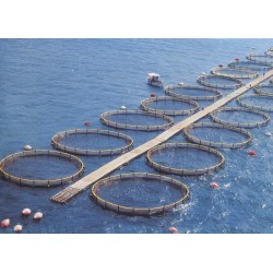 Cages circulaires MedSEA