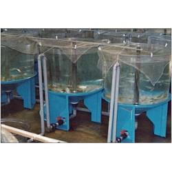 Bacs cylindroconiques AquaMV2 à 45°