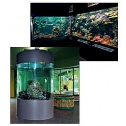 Aquariums de présentation