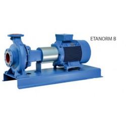 Pompes centrifuges pour eau de mer ETANORM B