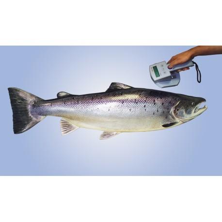 Système de marquage  à poissons EURO 1000